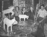 Mrs. William R. Robinson, Miss Finnin, Mrs. John S. Timlin, and Fred Green work on Christmas decorations